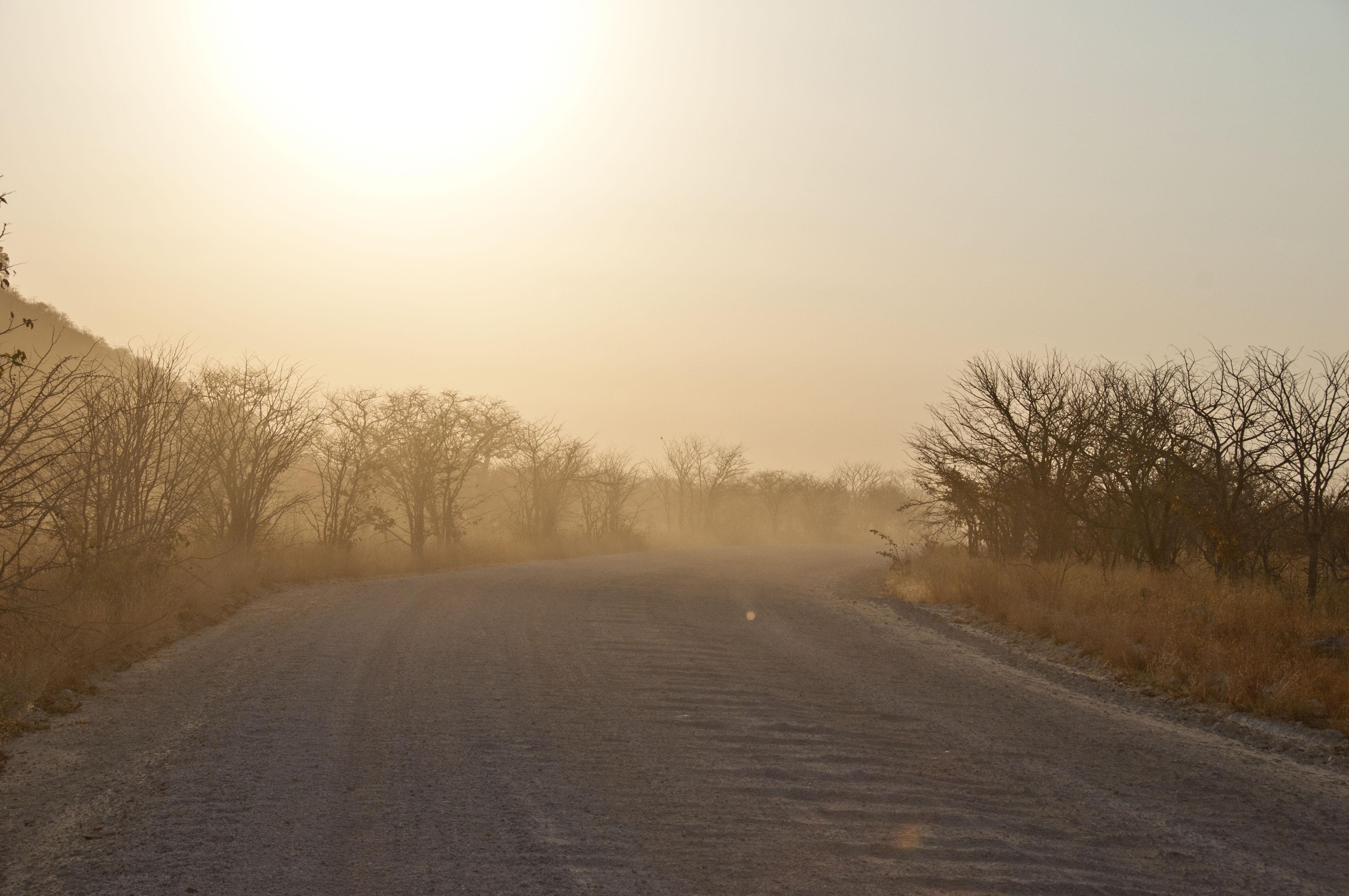 namibia_2014_kaokoveld-etoscha_105