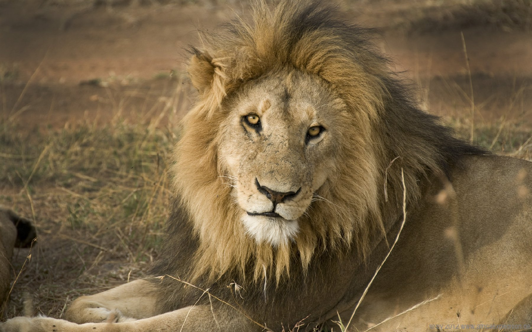 tanzania_africaexpedition_de_002