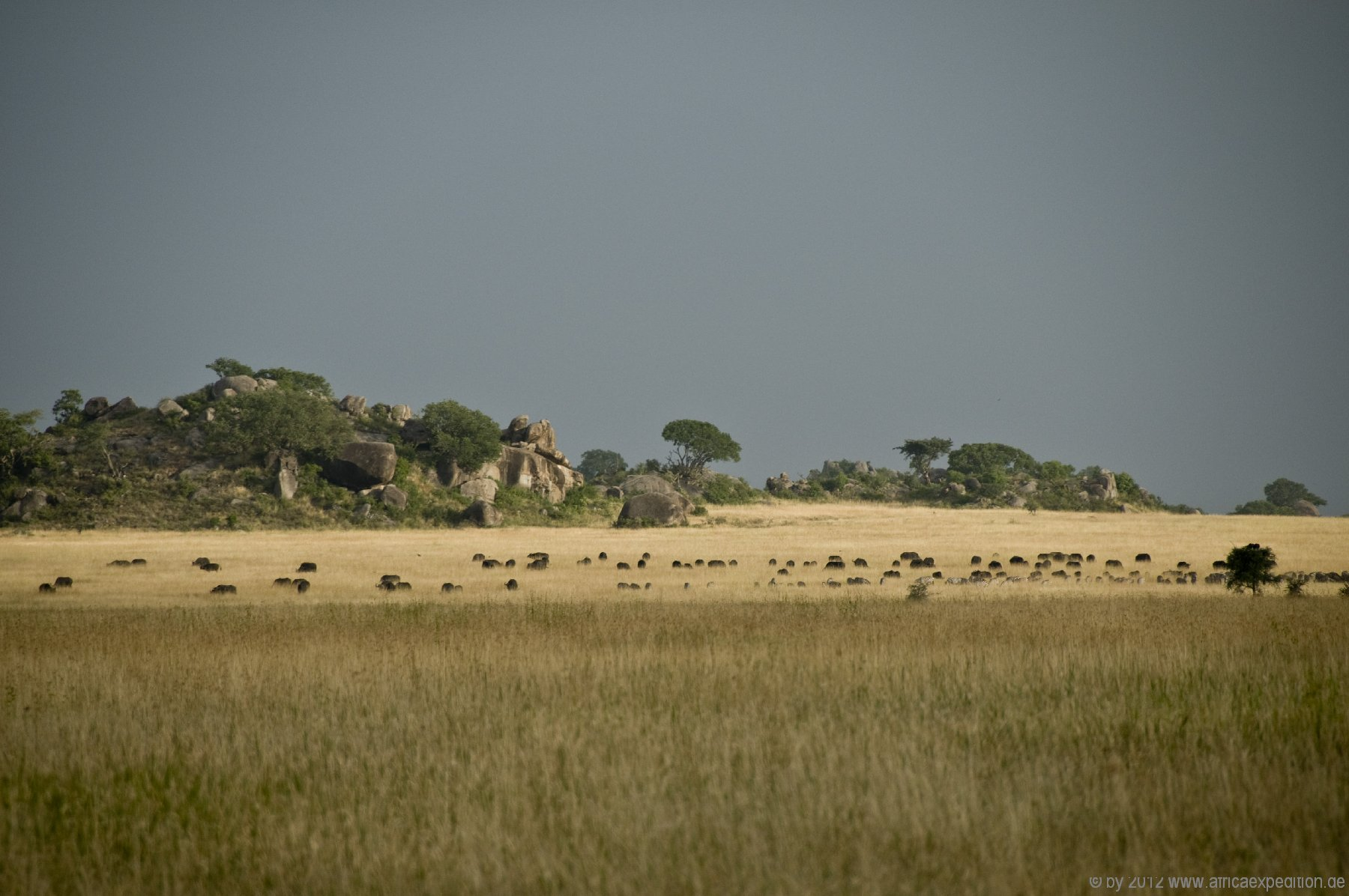 tanzania_africaexpedition_de_015