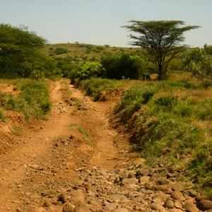 Turkanasee Route